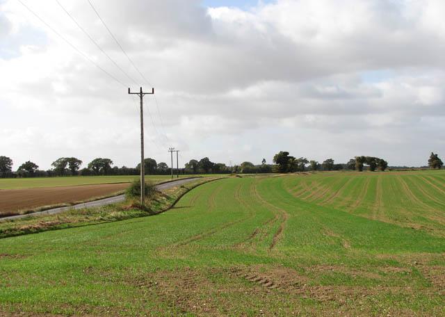 View west along the B1136 (Loddon Road)