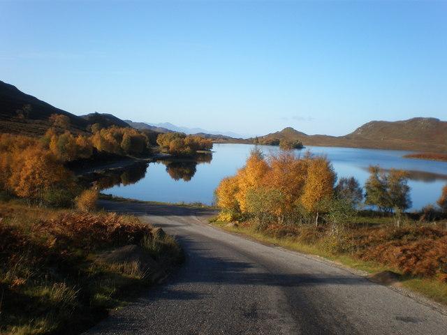 Autumn Gold by Loch Tarff