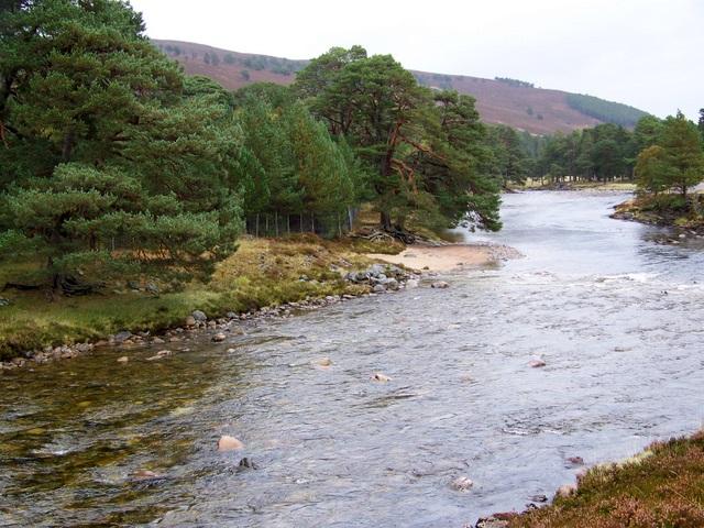 River Dee near Muir of Inverey