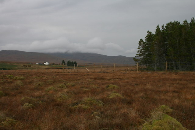 View to the nor'east towards Crask