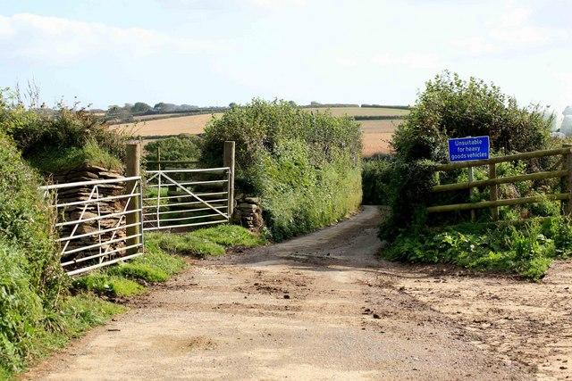 Narrow lane by Hendra farm