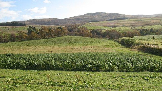 Farmland, Strath Braan