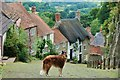 ST8622 : Gold Hill, Shaftesbury by Eugene Birchall