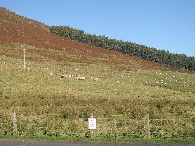 Slopes of Meall Mòr