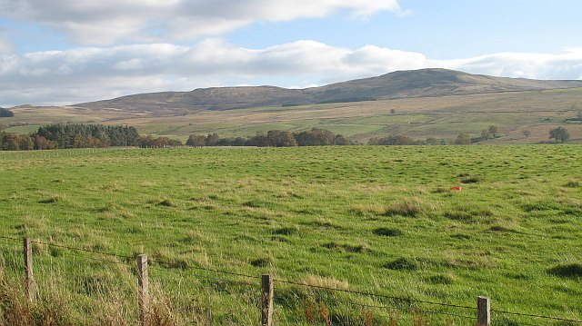 Grassland, Strath Braan