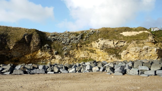 Magnesian limestone cliffs and sea defences south of Featherbed Rocks