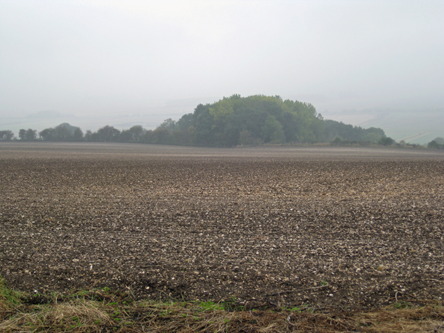 Looking towards Worlaby Fox Covert