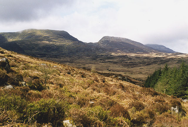 Slopes on the north side of Y Garn
