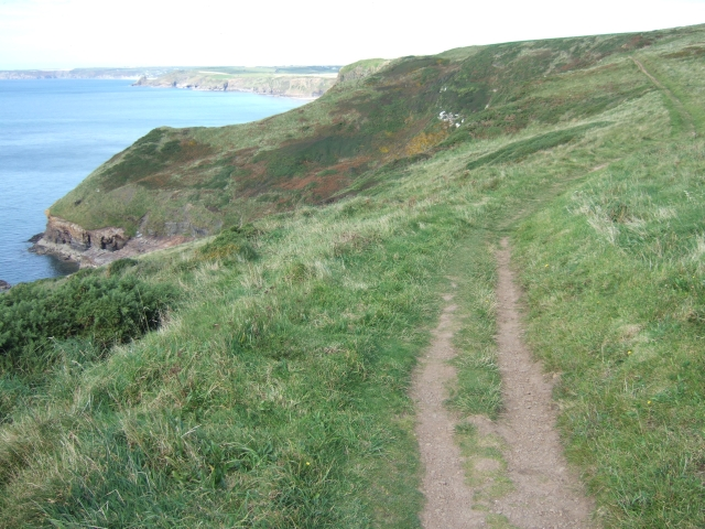 Coast path above Haroldston Bridge