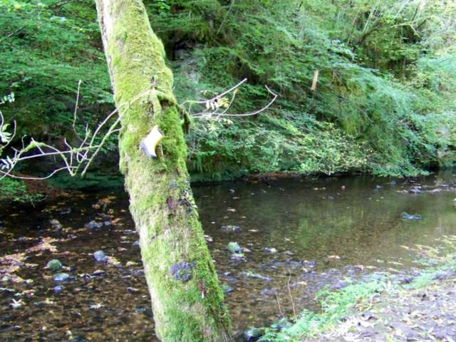 The Alyth Burn, Den o' Alyth