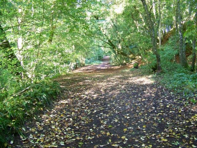 Path, Den o' Alyth