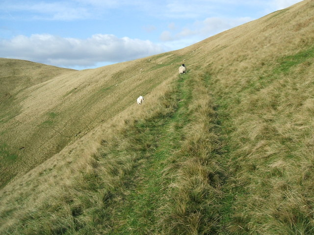 Path to the col between Fell Head and Linghaw