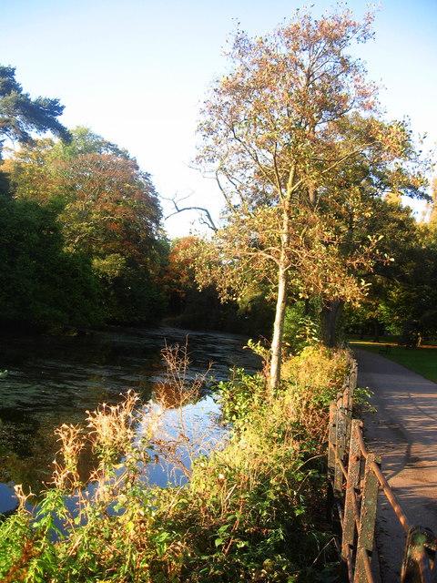 Autumn at Roath Park