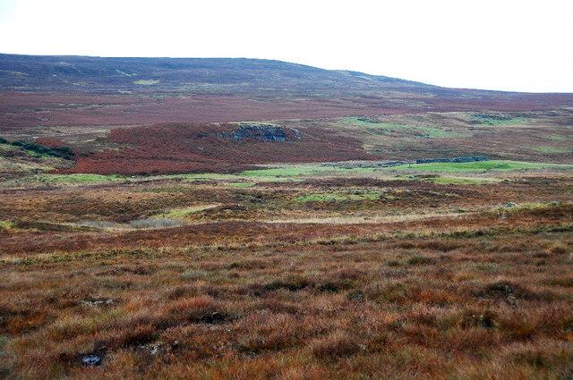 Moorland near Braegrudie