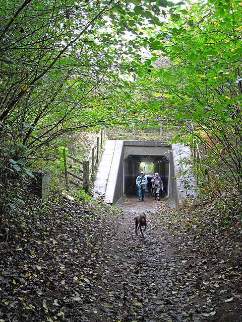 Underpass under Brampton By-pass
