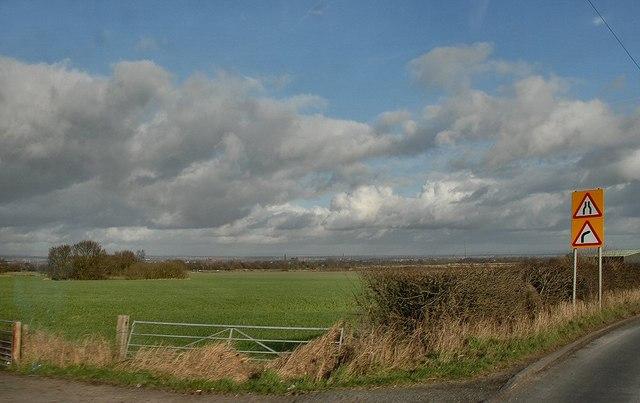 Wilton Lane