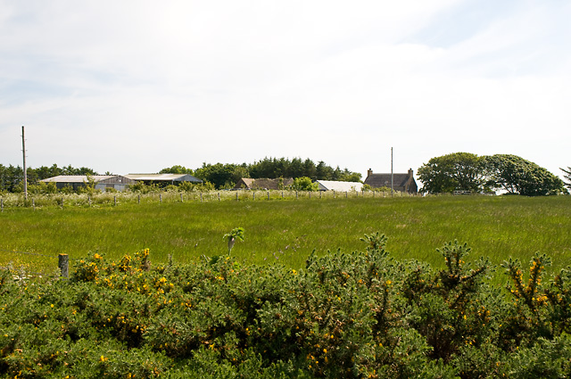 Farm Buildings near Tofts of Tain