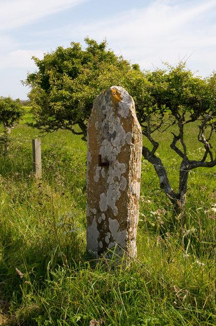 Flagstone Gatepost near Lochend