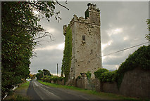 R6147 : Castles of Munster: Williamstown, Limerick (2) by Mike Searle