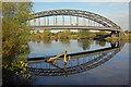 SK4630 : Pipe bridge above Sawley by Stephen McKay