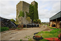 R3242 : Castles of Munster: Lisnacullia, Limerick by Mike Searle