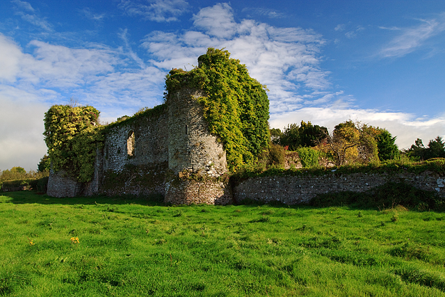 Castles Of Munster Castle Grace 169 Mike Searle Cc By