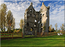 R7745 : Castles of Munster: Kilduff, Limerick by Mike Searle