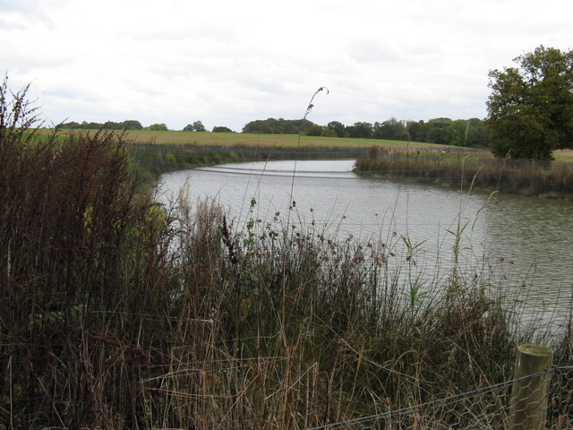 Netting over fishing pond SE of Crawfold Farm