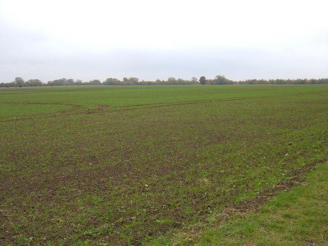 Farmland, Weel Carr