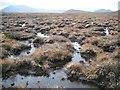 NN4693 : Bog behind Meall Liath-chloich : Week 43