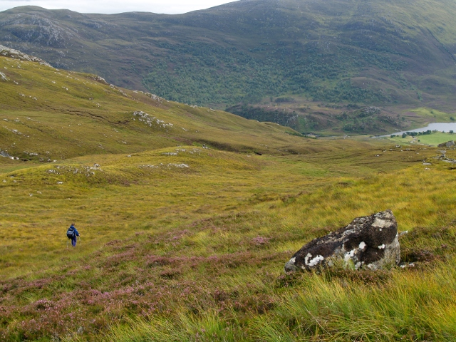 SW slopes of Garbh-charn,  Glen Strathfarrar