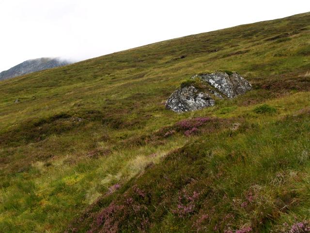 Hillside with boulder, Sgurr a' Choire Ghlais
