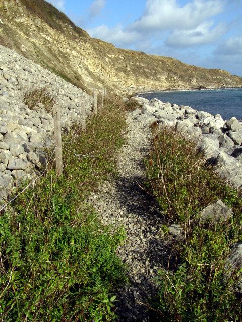 Path across the cliff reinforcement, Durlston Bay