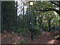 TQ4474 : Public footpath with illumination, Crown Woods by Stephen Craven