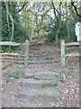 SJ5255 : Sandstone steps on the Sandstone Trail by Eirian Evans