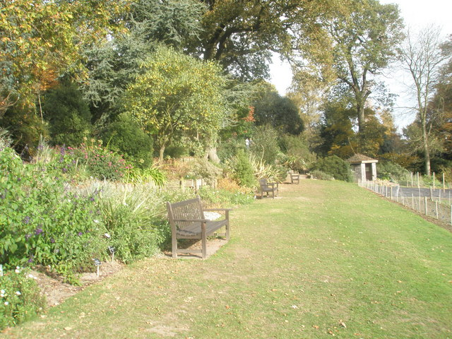Autumnal seats at RHS Wisley