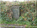 SJ7965 : Lucy Pillar in a hedgerow by Stephen Craven