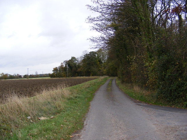 Rose Farm Lane
