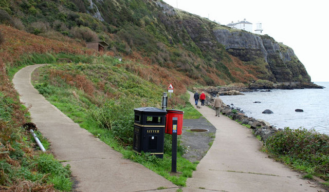 Two paths at Whitehead