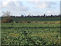 SP6749 : Across the fields to Greens Norton by Oliver Hunter