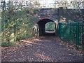 SP0998 : Underpass - Railway Line Sutton Park by John Proctor