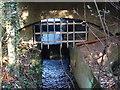 SP1097 : Bracebridge Pool  overflow and drainage channel by John Proctor
