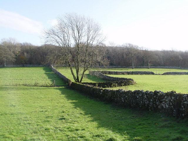 Drystone Walls