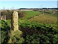 NS8183 : Standing stone on Toptowie Hill by Lairich Rig