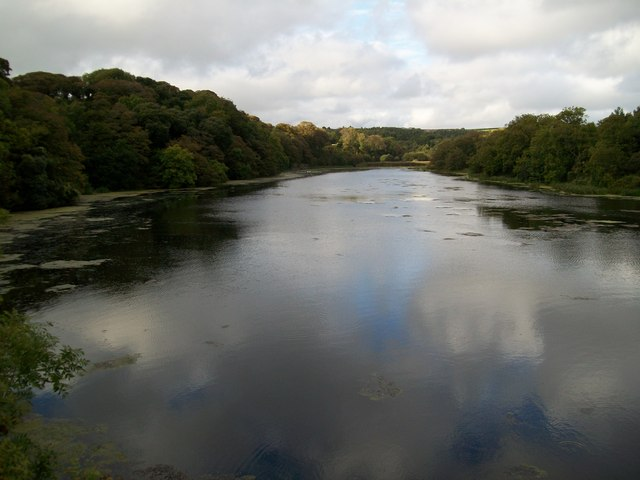 Bosherston, Pembrokeshire - Lily Ponds, Lakes and ...