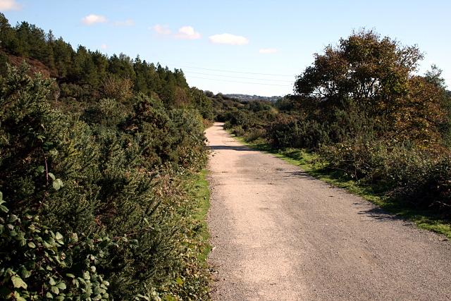Coast to Coast cycle path near Twelveheads