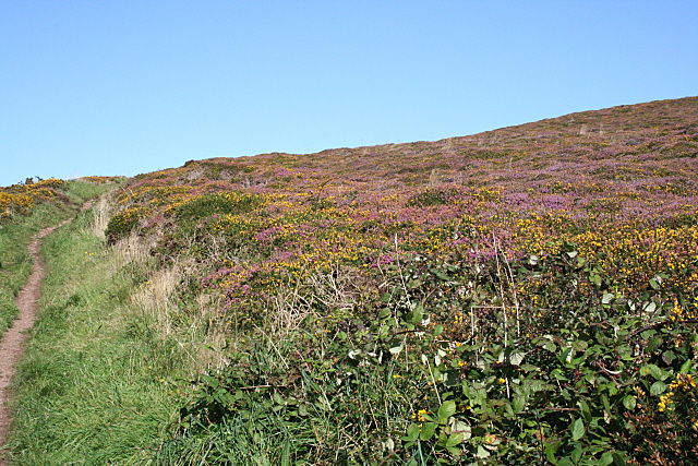 Footpath on St Agnes Beacon