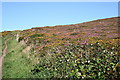 SW7050 : Footpath on St Agnes Beacon by Fred James