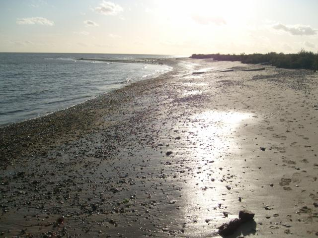 Beach at Mersea Stone