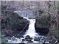 Dist:0.1km<br/>The top being the weir and the bottom a natural spout.